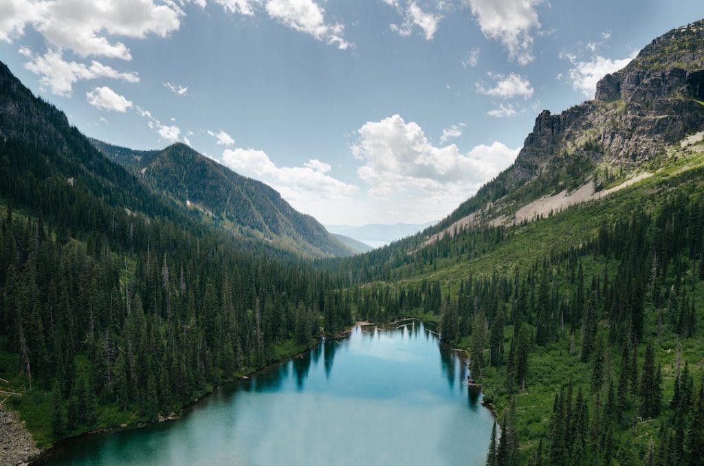 Best boba places Montana